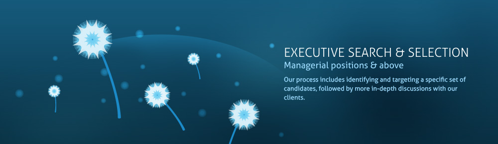 Executive Recruiters